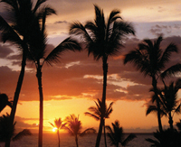 Hole In One Insurance Coverage for a Hawaiian Golf Vacation